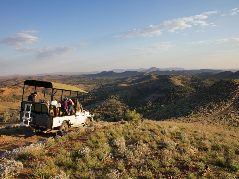 Arkaba Flinders Ranges