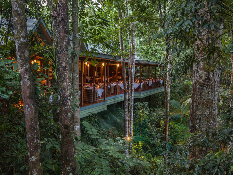Daintree National Park - Silky Oaks Lodge