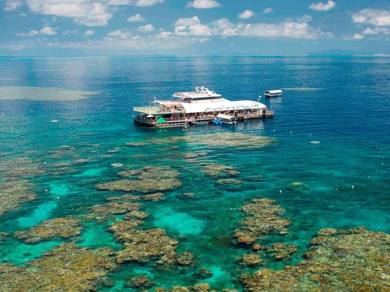 Great Barrier Reef - Reef Magic Platform