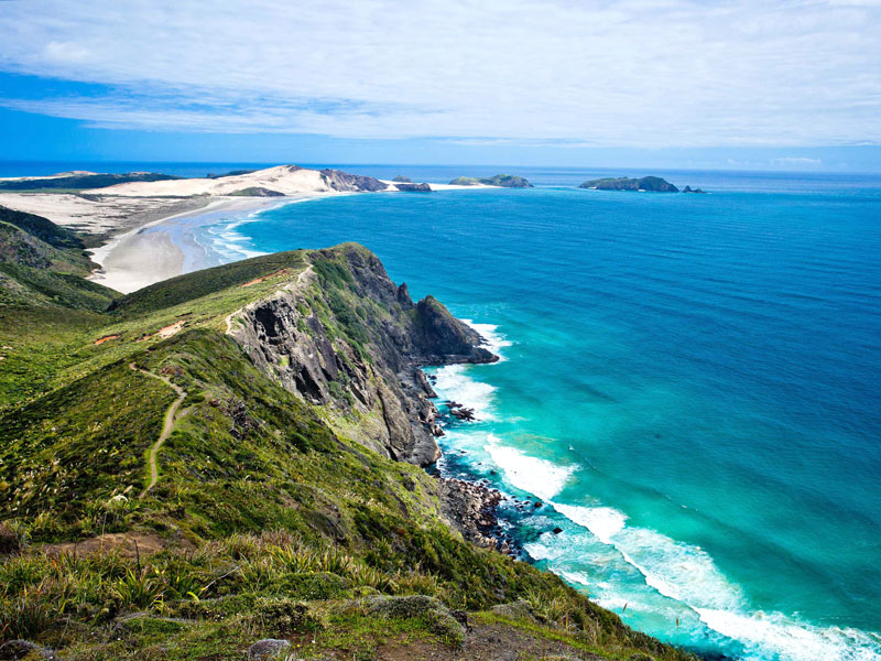 Cape Reinga & 90 Mile Beach Tour