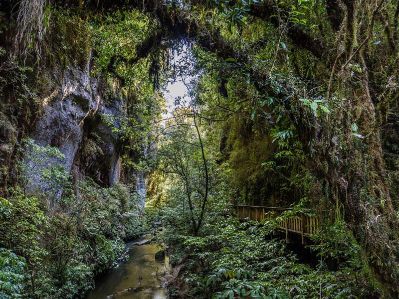 Waitomo Caves Region