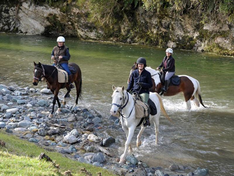Stonefly Lodge - Horse Treks