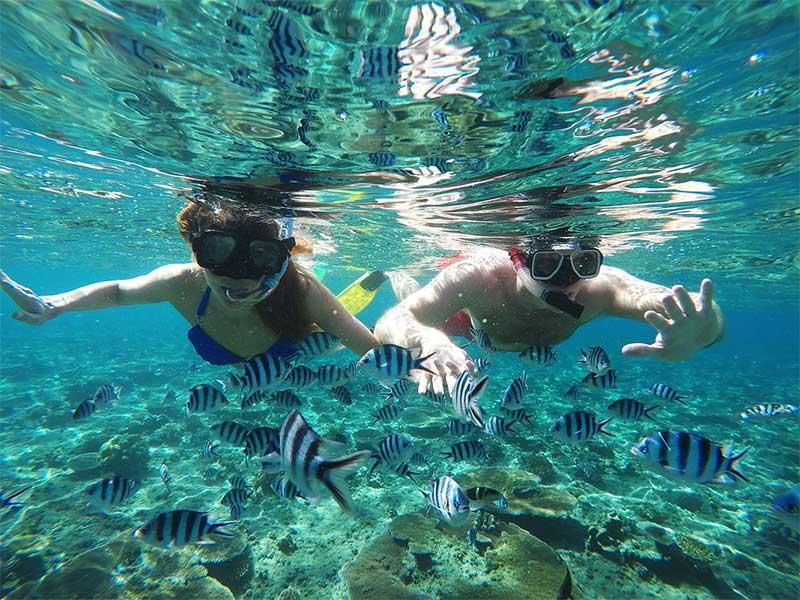 Tropica Island Resort - Snorkeling