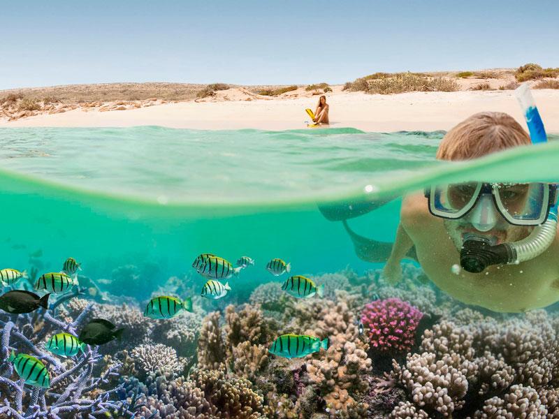 Ningaloo Reef - Snorkling